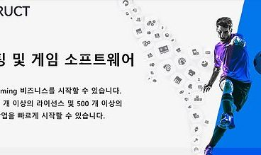 Finding the Best Websites and Betting Lines in Korea